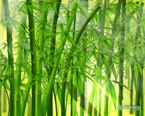 Japanese_Bamboo_Forest